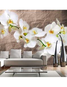 Papier Peint Purity Of The Orchid  Orchidées Artgeist