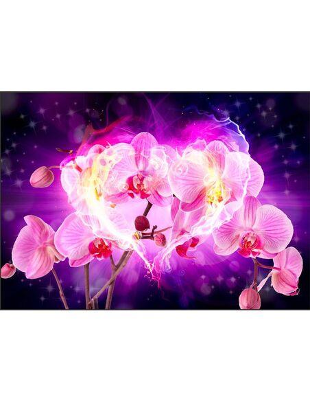 Papier Peint Orchids In Flames  Orchidées Artgeist